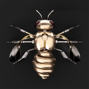 3D insect bee