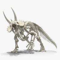 Triceratops Horridus Skeleton Rigged