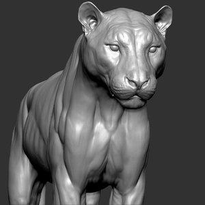 3D tiger vfx zbrush sculpt