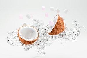 3D model coconut water splashes