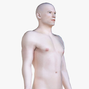 3D human body polys model