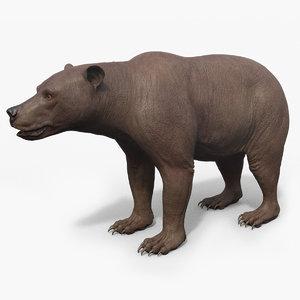 3D bear animal beast