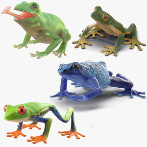 frogs rigged 2 3D