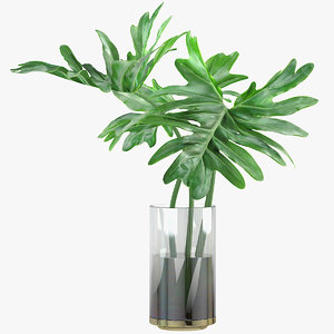 3D model philodendron leaves