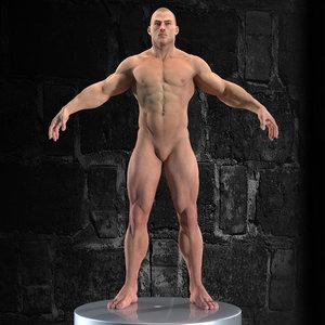 3D model character anatomy