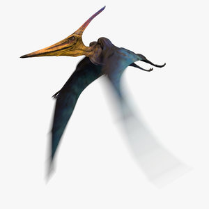 3D pteranodon longiceps cyan animation flying