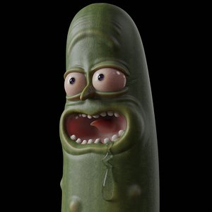 3D pickle rick print model
