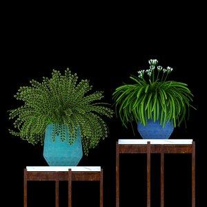 3D potted plant set -
