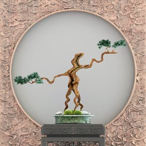 potted bonsai tree background model