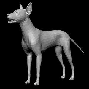 dog base mesh animal model