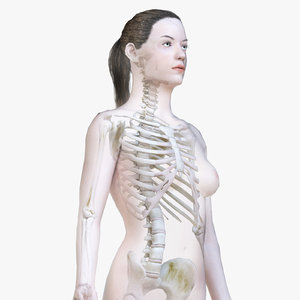 3D model female body skeleton polys