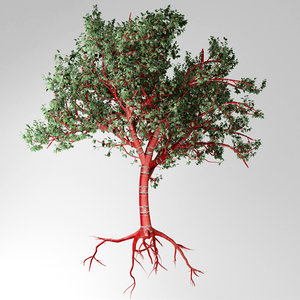3D tibetan cherry tree model