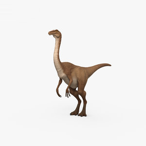 gallimimus dinosaurs animal 3D model