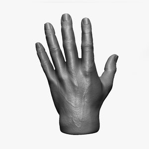 photorealistic male hand zbrush 3D model