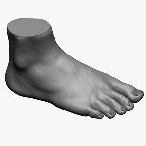 3D model photorealistic male foot zbrush