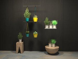 various home plants orla 3D model