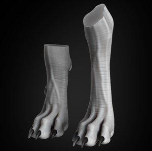 dog paw 3D model