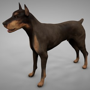 doberman rigged l613 animate 3D model