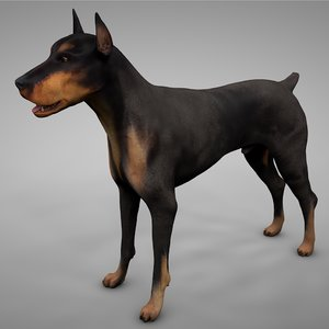 doberman rigged l615 animate 3D model