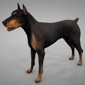 3D doberman rigged l609 animate