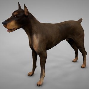 doberman rigged l620 animate 3D model
