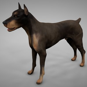 doberman rigged l622 animate 3D model
