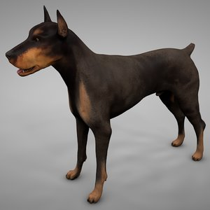 3D doberman rigged l625 animate