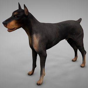 doberman rigged l618 animate 3D model