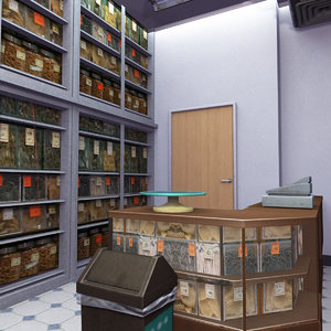 traditional chinese medicine store 3D model