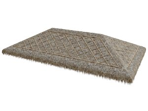 3D thatch roof