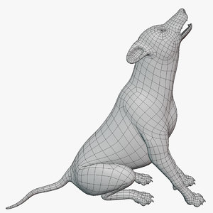 3D rigged wolf base mesh