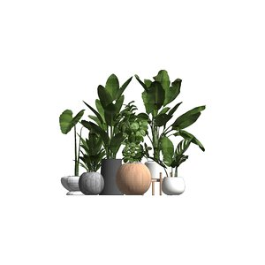 revit potted plants family 3D model