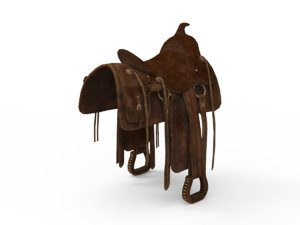 3D saddle