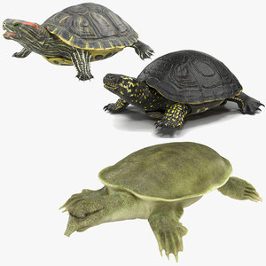 turtles rigged 2 3D model
