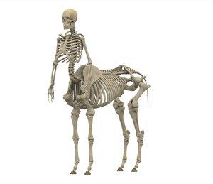 3D centaur skeleton