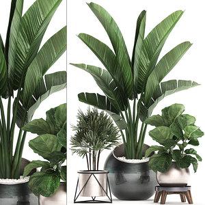 3D houseplants plants potted model