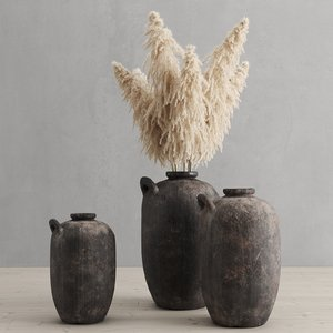 cortaderia pampas grass vases 3D