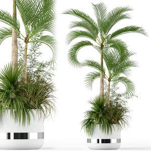 3D plants 207
