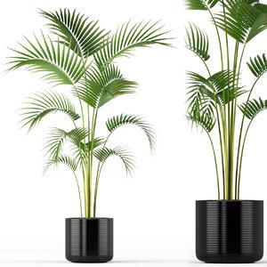 plants 208 3D