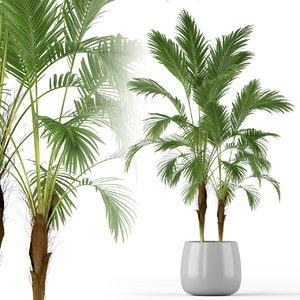 3D plants 210