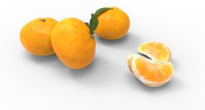 mandarin fruit food 3D model