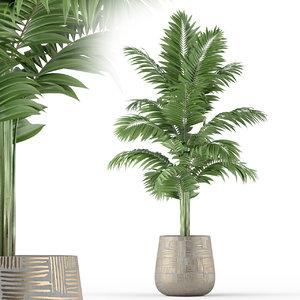 3D plants 221