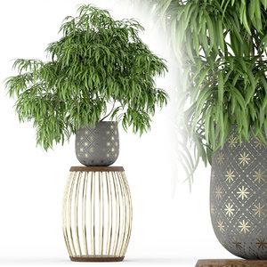 3D plants 222