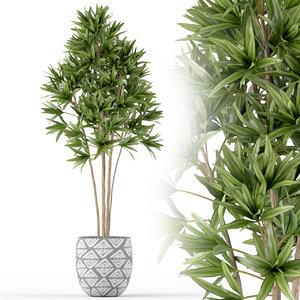 plants 223 3D