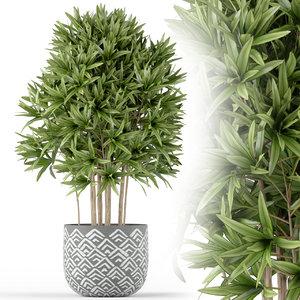 3D plants 224 model