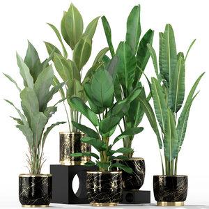 3D plants 229