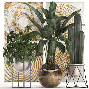 3D exotic plants potted