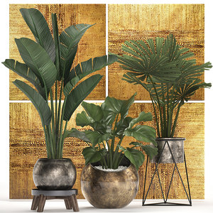 3D model houseplants plants potted