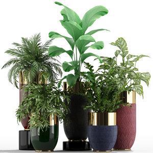 plants 233 longhi godwin 3D
