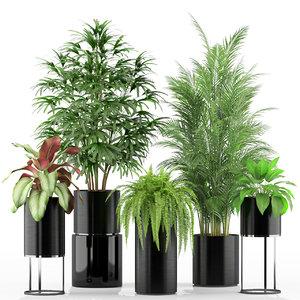 3D model plants 234